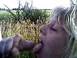 Amateur cornfield blowjob