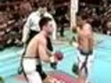 The Best of Boxing