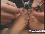 Hardcore Tit Torture - Tit torture Videos