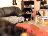 Amazing Cougar Ebony Mrs Sky With Angel Voice And Hot Body